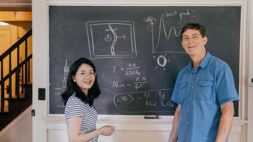 Hui Wang and Miles Blencowe
