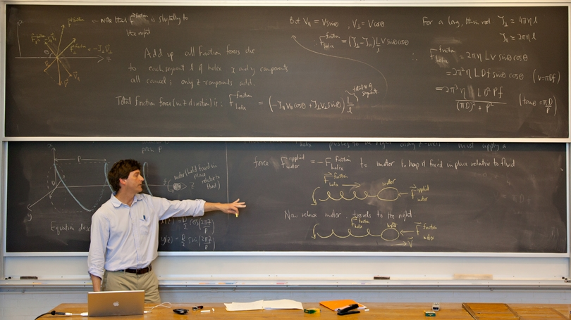 Miles P. Blencoe, Professor of Physics and Astronomy, teaching Physics 30, Biological Physics